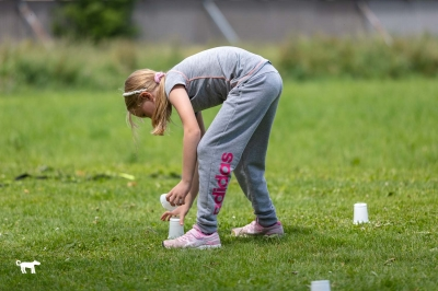 Exercice du flair - Manifestation canine à Monthey - 13 juin 2020