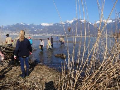 Nettoyage Grangettes, Lac Léman