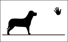Cours privés pour chiens, Monthey, Suisse