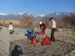 Nettoyage des roselières des Grangettes, 2014