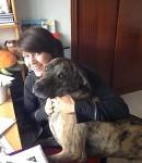 Edouardo, un gentil chien de 4 ans dans l'attente d'un nouveau foyer