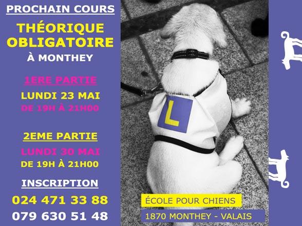 Formation théorique pour propriétaires de chiens - mai 2016