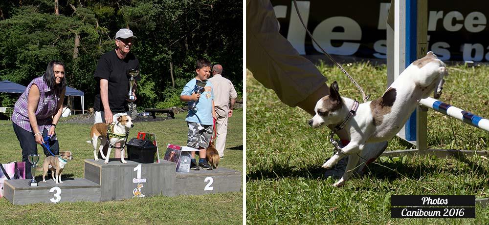 Photos de la fête des chiens Caniboum 2016 - Saint Maurice - Valais