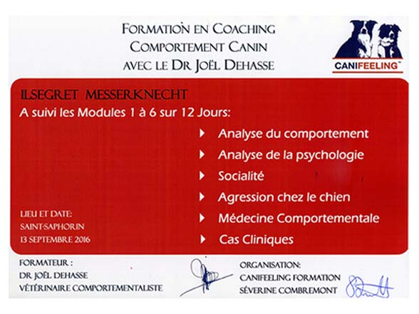 Attestation cours canin Dr Joël Dehasse - modules 1-6