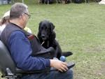 Association suisse d'éducation de chiens d'assistance pour personnes handicapées au plan moteur ou épileptiques