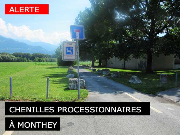 Patinoire du Verney-Monthey