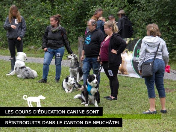 Éducation Canine Neuchatel