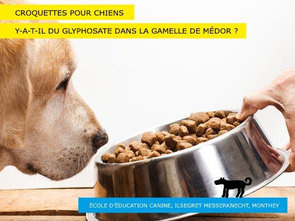 Gamelle de Médor - Croquettes pour chiens