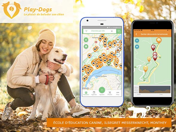 Play-Dogs Application
