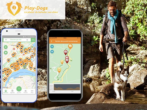 Play-Dogs Idées Ballades Chiens